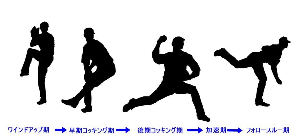 投稿            体の知識(15) 野球と肩の障害